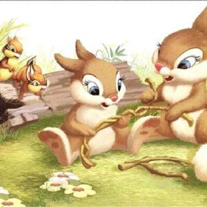 משפחת הארנבות