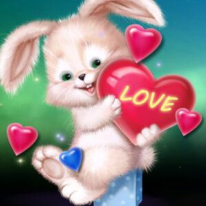ארנב אהוב