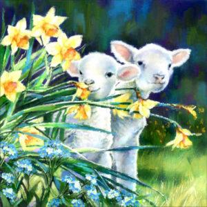 כבשים בצמחיה