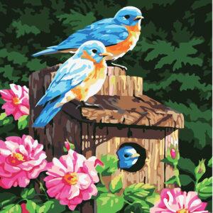 ציפורים בקן
