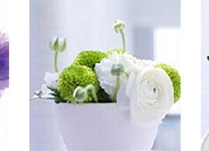 שלישיית פרחים בכלים
