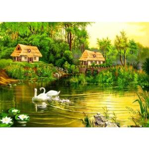צביעה לפי מספר ברבורים באגם כפרי