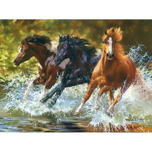 צביעה לפי מספר סוסים דוהרים