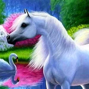 צביעה לפי מספר שיער סוס