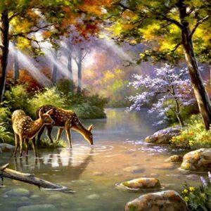 איילים בנהר יהלומים מרובעים