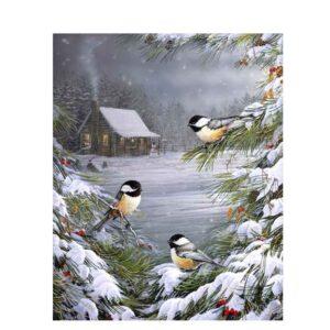 ציפורים בשלג